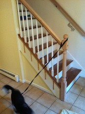 Replacement of Contemporary Stair Railing